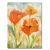 Shelia Golden Field of Poppies Canvas Print