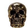 Halloween Gold Metallic Skull