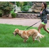 Hands Free Running Leash for Dogs