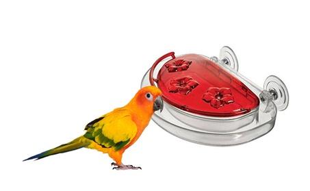 Plastic Bird Feeder Window Hummingbird Feeder (Goods Pet Supplies Bird Supplies) photo