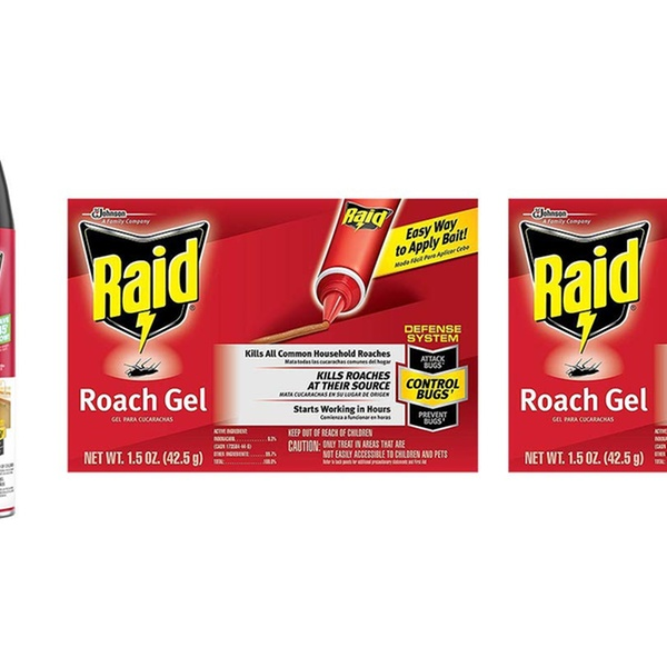 Raid Ant and Roach Variety Pack, Ant and Roach Killer Fragrance Free, Roach  Gel