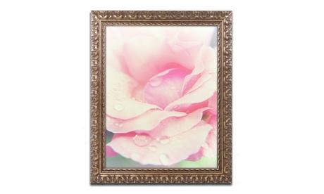 PIPA Fine Art 'Softened Rose' Ornate Framed Art a48d2a08-d002-4cc5-b1b2-b4f1f6d02e6d