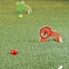 Hey! Play! Animal Mini Croquet Playset (8-Piece)