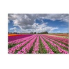 Pierre Leclerc 'Tulip Field' Canvas Art