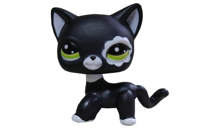 Lps Action Figure Toy2249 Black Short Hair Cat Kitty Groupon