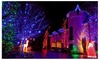 Waterproof 100 LED Tree Fairy String Party Lights (10M)