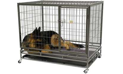 Image Placeholder Image For GoPetClub Heavy Duty Steel Pet Crate