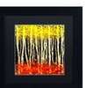 Roderick Stevens 'White Aspens 2' Matted Black Framed Art