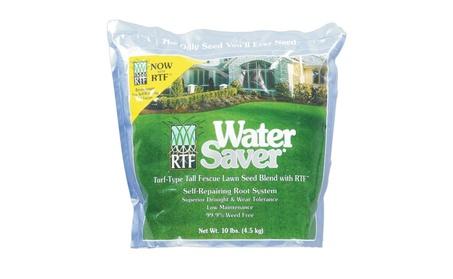 Barenbrug 11110 Water Saver Tall Fescue Grass Seed Blend, 10 Lbs b5ab1613-817c-42bc-828e-187bf7e16cc7