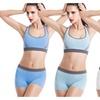 Women's Seamless Comfort Sports Set Yoga Gym Bra Vest +Short