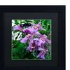 Kurt Shaffer 'Postman Butterfly on Orchid' Matted Black Framed Art
