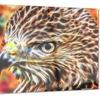 Vibrant Eagle- Animal Metal Wall Art 28x12