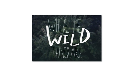 Leah Flores 'Where the Wild Things Are' Canvas Art 00ecb9d8-c6d1-4b9d-918d-37c7a2dc8ac1