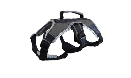 Heavy Duty Padded Control Dog Harness(Black, X-Small) 8af9d53d-43f5-457b-9c44-8f1797458edd