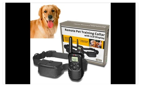 Remote dog training collar e108fa85-bafa-4951-9c7a-09860b8ae2ee