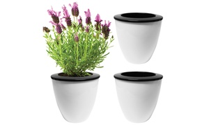 Evelots 3 Pack Of Self Watering Planters, Small Or Large, White Pots