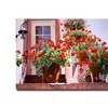David Lloyd Glover Geraniums on the Stairs Canvas Print