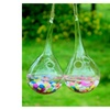 SHINA 2pcs Transparent Water Drop Type Hanging Glass Vase with 5m Rope