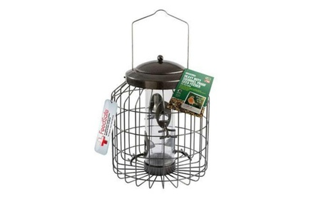Gardman USA BA01820 Squirrel Proof Seed Feeder (Goods For The Home Patio & Garden Bird Feeders & Food) photo