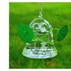 SHINA 2pcs Creative Transparent Hanging Glass Vase with 5m Rope
