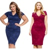 Women's V-neck Short Sleeved Lace Embroidered Dress Plus Size