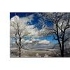 Lois Bryan Mountain View Canvas Print 16 x 24