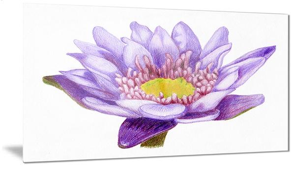Hand Drawn Purple Lotus Floral Art Metal Wall Art 28x12