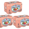3 Boxes x 6 Count - Sanpellegrino Prickly Pear and Orange Sparkling