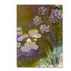 Claude Monet 'Waterlilies and Agapanthus' Canvas Art