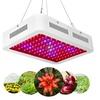 600W Dual Chips Full Light Spectrum LED Plant Grow Light Veg Flower