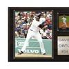 C & I Collectables 1215ORTIZ MLB David Ortiz Boston Red Sox Player Plaque
