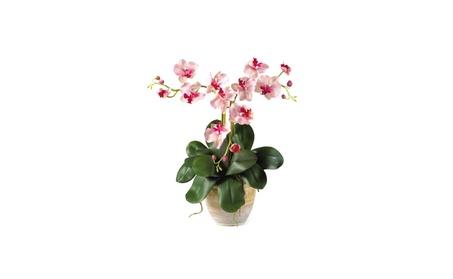 Triple Mini Phalenopsis Silk Orchid Arrangement - Pink / White a6fe6d71-3ba4-4444-a0d8-aab95a07f497