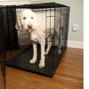 Foldable Double-Door Pet Training Crate with Divider
