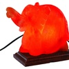 Himalayan Salt Elephant Shape Salt Lamp