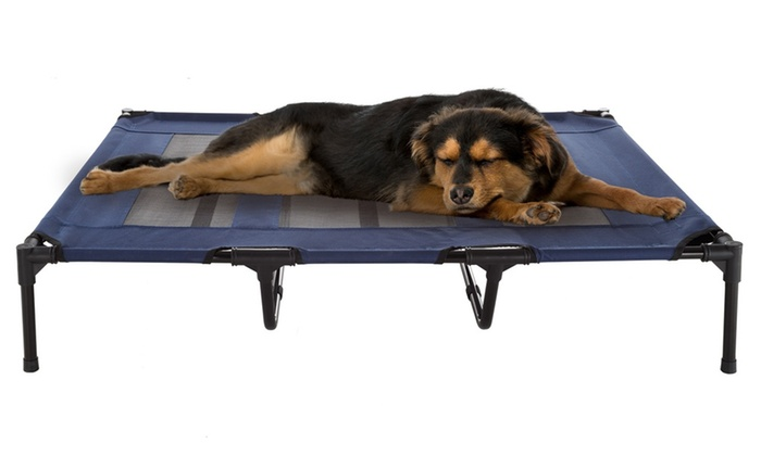 Petmaker Elevated Pet Bed Portable Raised Cot Style Bed