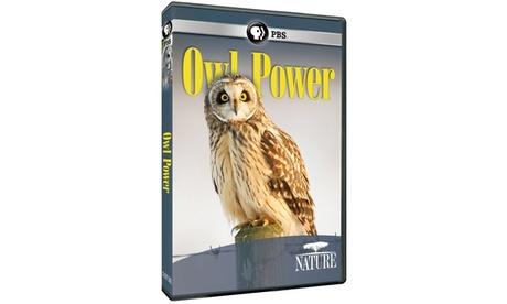 NATURE: Owl Power DVD ae629652-7ede-4a74-bb37-88d93853d4b7