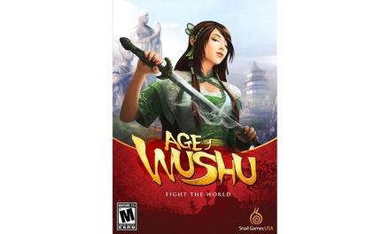 Nintendo Age of Wushu - PC