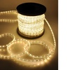 "WYZworks 3/8"" LED Rope Lights Crystal PVC Tube IP65 Water Resistant"
