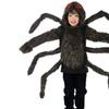 Tarantula Child Hoodie