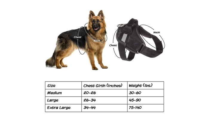 Up To 44% Off on Dog Harness-Size Large Chest ...   Groupon Goods
