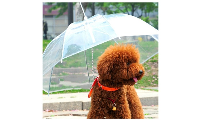 OSP: Dog Umbrella with Built-in Leash