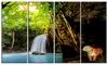 Tiger Watching Waterfall - Landscape Photography Metal Wall Art