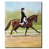 Michelle Moate Horse of Sport IV Canvas Print 18 x 24