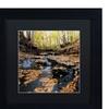 Kurt Shaffer 'Lakeview Autumn Falls' Matted Black Framed Art