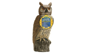 Dalen Products DALENSROH4 Natural Enemy Scarecrow SOL-R Action Owl