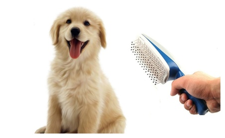 Pet Hair Grooming Brush, Hair Remover Mitt, Dual Side For Dogs & Cats a5407771-b220-4f59-8af0-0c77ef50913a