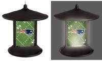 NFL Solar Bird Feeder photo