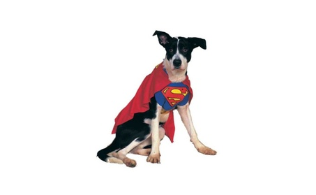 Costumes For All Occasions AF194LG Superman Pet Costume Large fd8c4232-3fbf-440b-93c1-572a9ae69be5