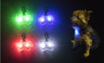 Water-Resistant LED Dog Collar Light Charm (1-, 2-, or 3-Pack)
