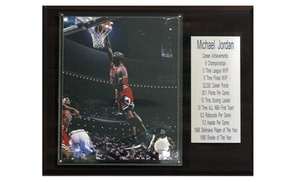 C & I Collectables 1215JORDANST NBA Michael Jordan Chicago Bulls Stat